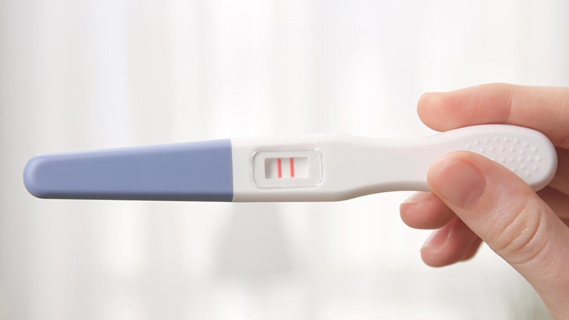 How To Fake A Pregnancy Test Hmhb