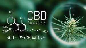 CBD compound definition