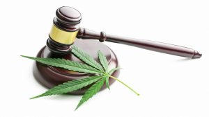 cannabis hemp leaf and judge gavel